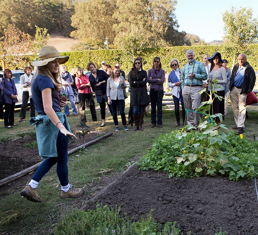 A woman wearing a sun hat shows a group of people a vegetable patch